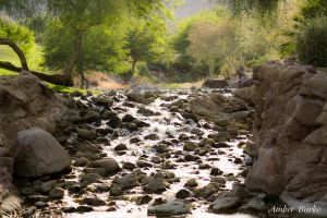 Desert stream at Bighorn by XanthicAmber