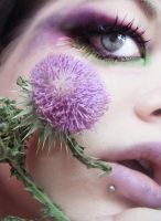Thistle by MissHayleyBee
