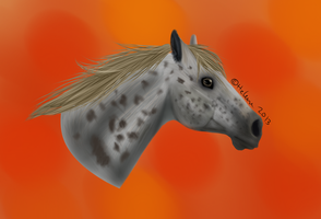Realistic horse potrait 2 -for mom- by Raisy-Chan