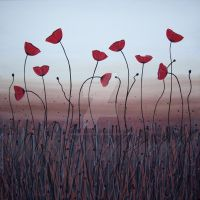 poppies by jennymacattack
