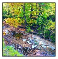 Hartsville creek bed.img140, with story by harrietsfriend