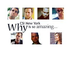 why csi ny is so amazing... by frenchly