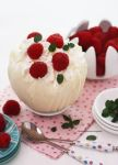 White Chocolate Mousse in White Chocolate Bowl by theresahelmer