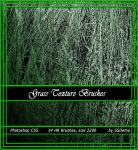 Grass Texture Brushes by righteouBrother