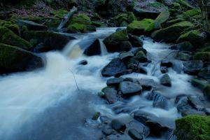 Colden Water 1 by TazPoltorak