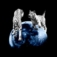 Tigers on the Moon by Illuminicense