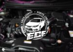 East Coast Forte Crew Logo by melongray