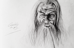 Gandalf the Grey by PowermadMistress