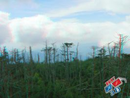 Mountain Scene Anaglyph 1 by redtailhawker