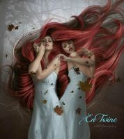 Entwine by mshellee
