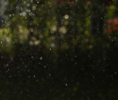 rain bokeh VI by lostpuppy-STOCK