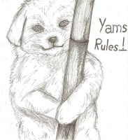 Yams Rules Puppy by 13anana