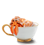 Day 11 Teacup: Hermit Crab by Yufika