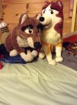 Balto and Jenna plush  by dogmaster22