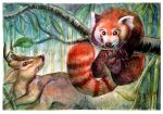 Palling Around - Red Panda and Reeves's Muntjac by ExiledChaos