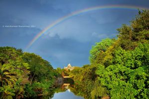 Walt Disney Animal Kingdom Rainbow by ashamandour