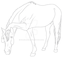 Horse 84 by SomeLines
