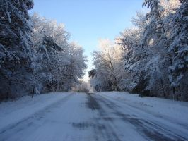 Wisconsin Woods Winter Road 2 by FantasyStock