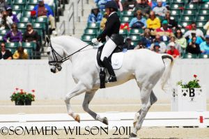 Kim Severson Dressage III by zeeplease