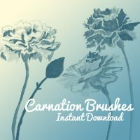 Carnation Brushes by corelila