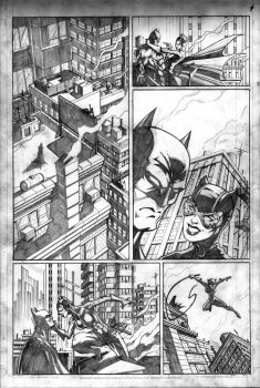 Batman and Catwoman by VASS-comics