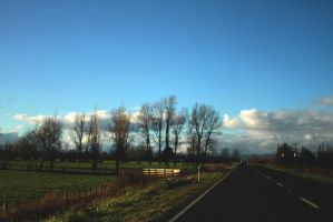 New Zealand Highway 2012 by sayra