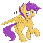 Scoots by billysan727