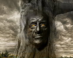 man face in tree by Cuca24