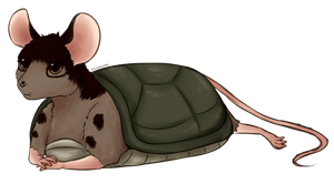 Turtle Mouse by Midoromi