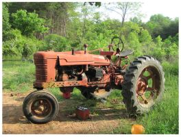 old Farmall Tractor by CrystalMarineGallery