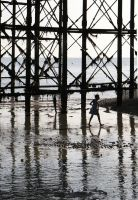 Brighton Pier 01 by cahilus