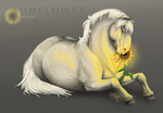 Sunflower by Asceline