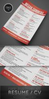 Free Resume / CV PSD Template by CursiveQ-Designs
