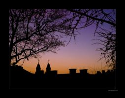 Silhouettes by rici66