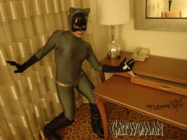 Doing some catburglering !!! by RockerDragonfly