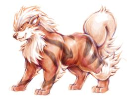 PokeDrawing - Arcanine by BlueSkyeMonkey