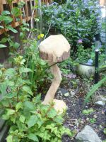 wooden mushroom two? by HellyMr