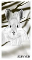 Blue hare by NaguX