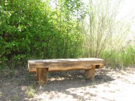 Natures seat 1 by brandrificus-stock