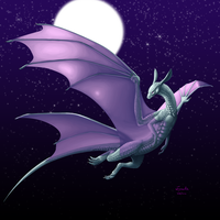 Four Winged Dragon by SophieJaguarkia