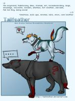 Tailfeather ID v2.0 by tailfeather