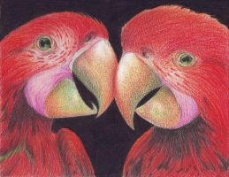 2 Parrots by LauraMel
