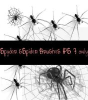 spiders pack1 by SpYderDelusion