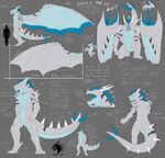 Draco Ref by DRACOICE