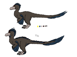 Kymori color reference summer and winter plumage by TheCheeseCannibal