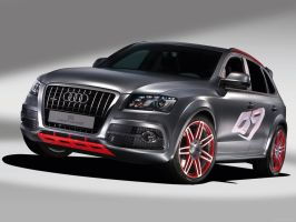Audi Q5 Custom Concept by TheCarloos
