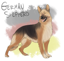 German Shepherd by PippinPeanut