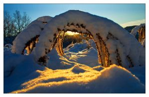Solar arch by Morpher-inc
