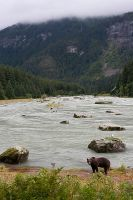 Salmon River by Robin-Hugh