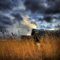 s_q by Radiatr